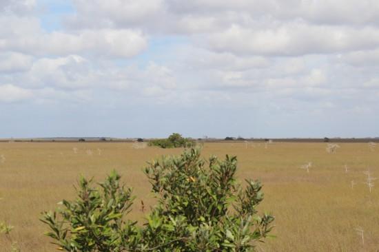 Aussicht vom Pa-hay-okee Overlook