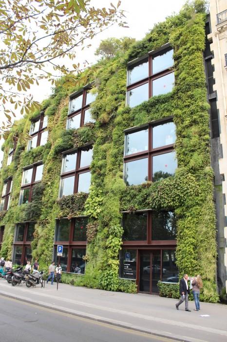 Grüne Fassade Musée du Quai Branly