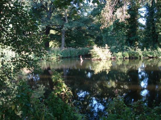 hübscher kleiner See beim Schloss Charlottenburg
