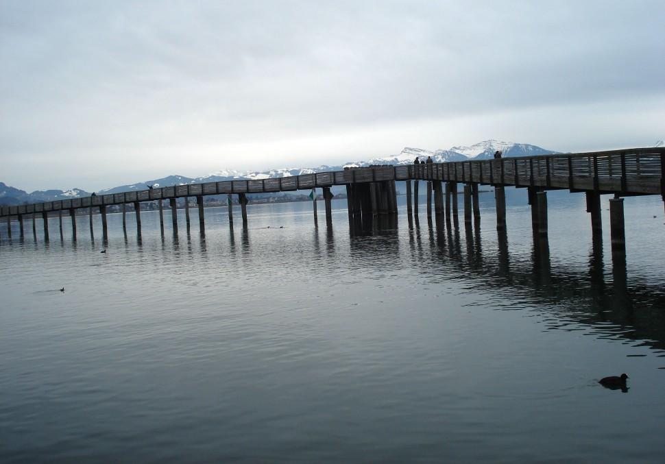 Holzsteg Zürichsee