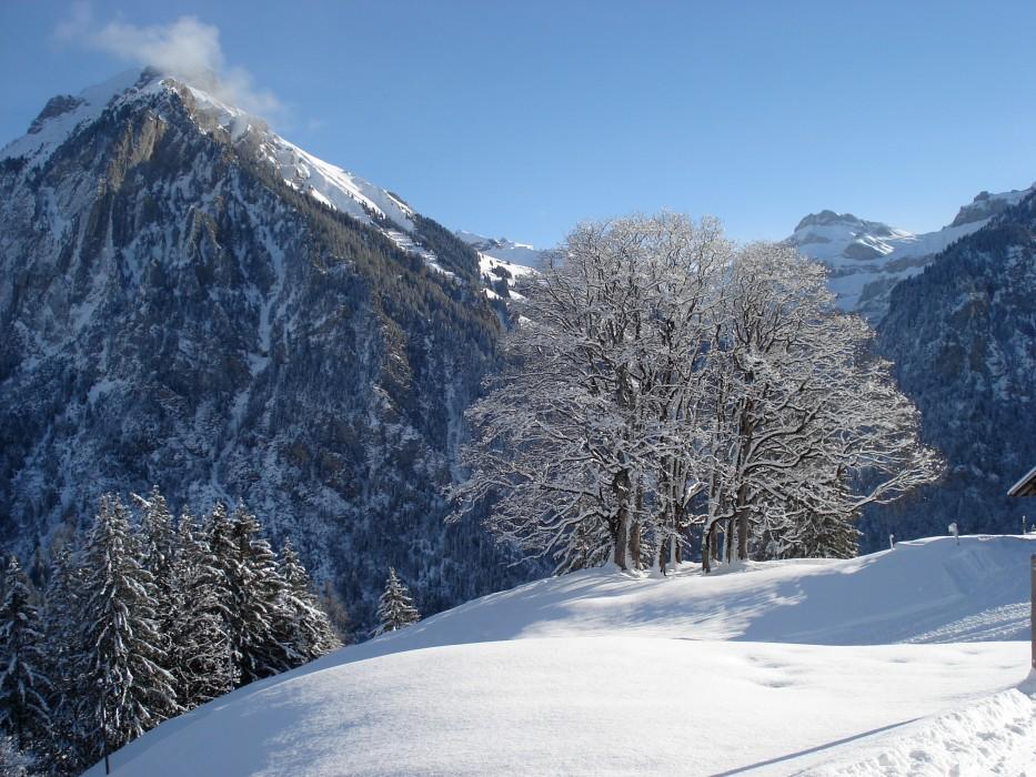 Winterlandschaft_Schweiz