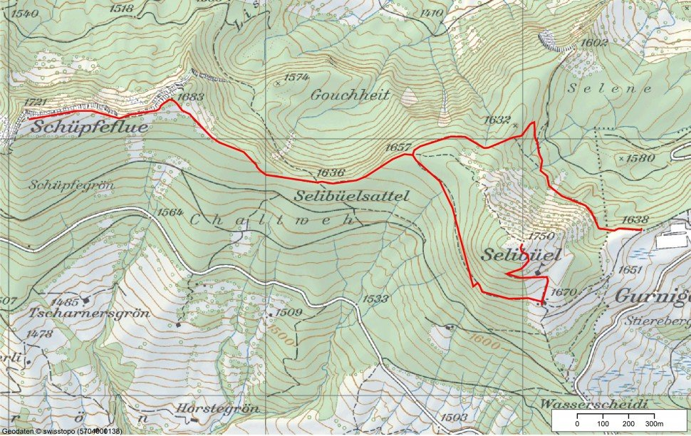 Naturpark Gantrisch Schneeschuhtrail