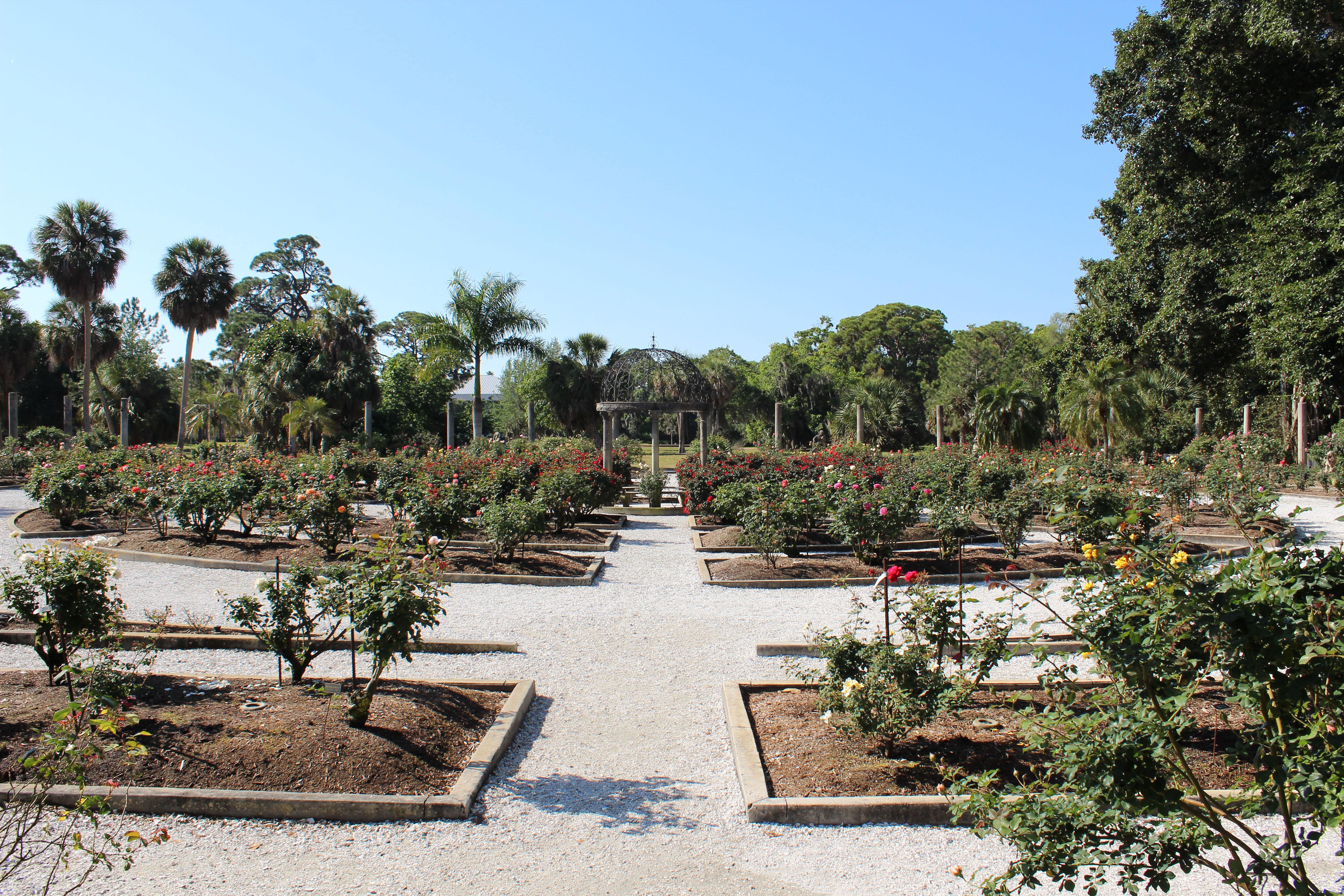 Garten eden im ringling museum of art in sarasota for Garten eden