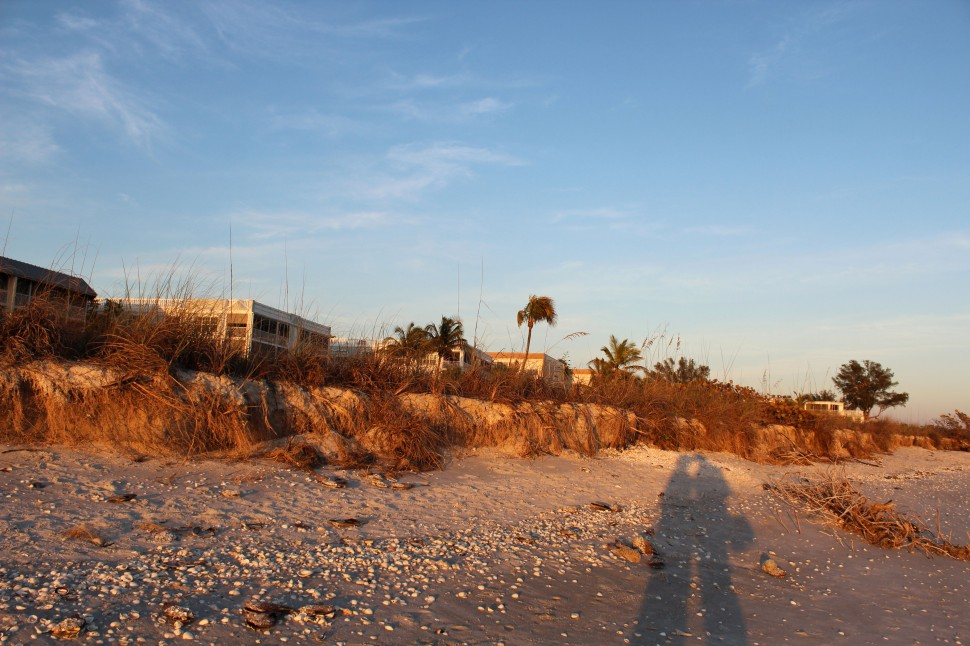 Sanibel Shadow