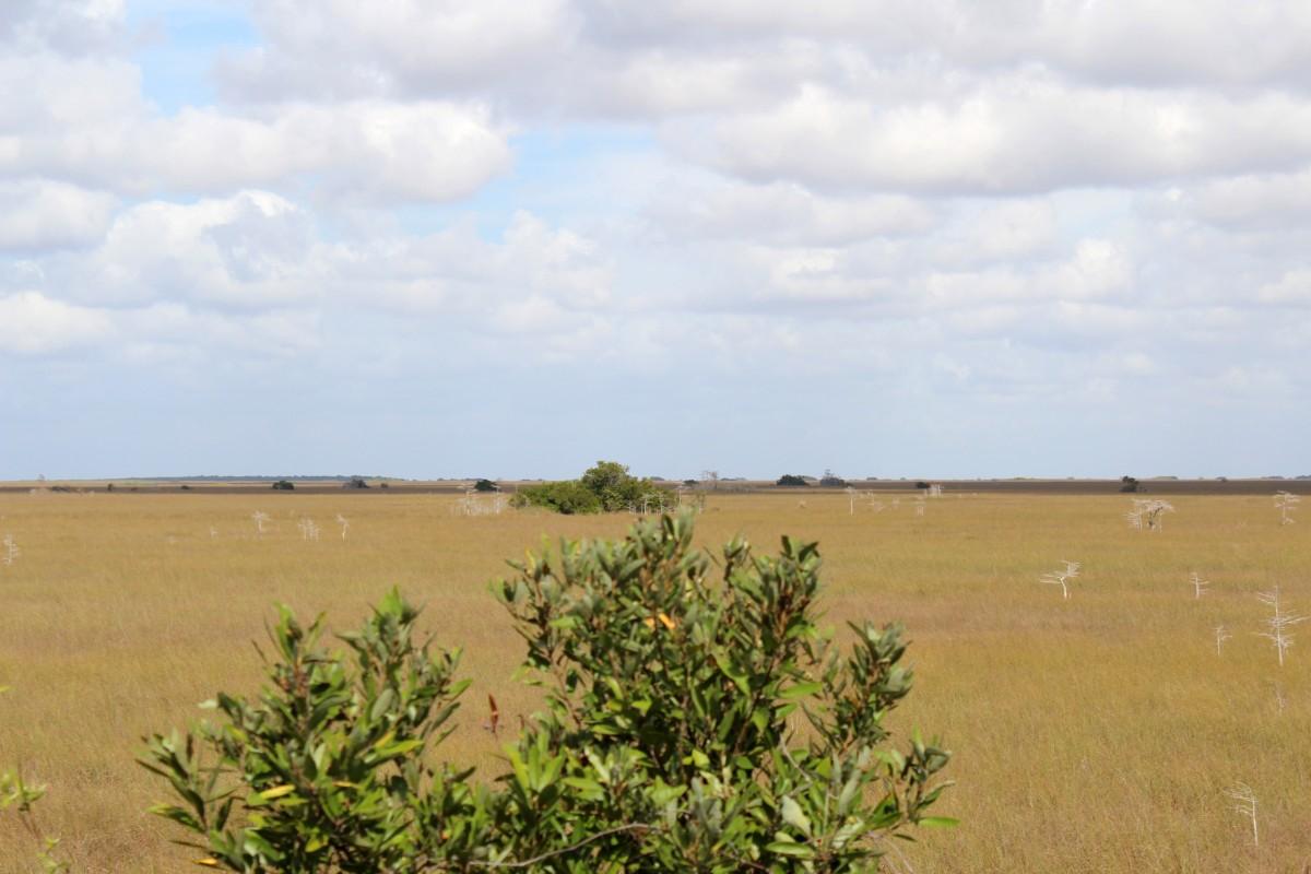 Travel Tuesday Snapshot – Best of Florida