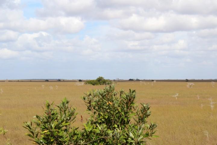 Reiseschnappschuss – Best of Florida