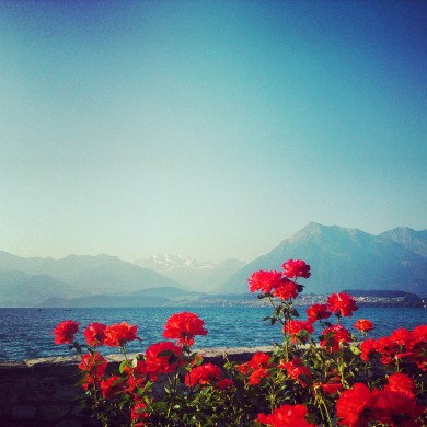 Instagram_Thunersee