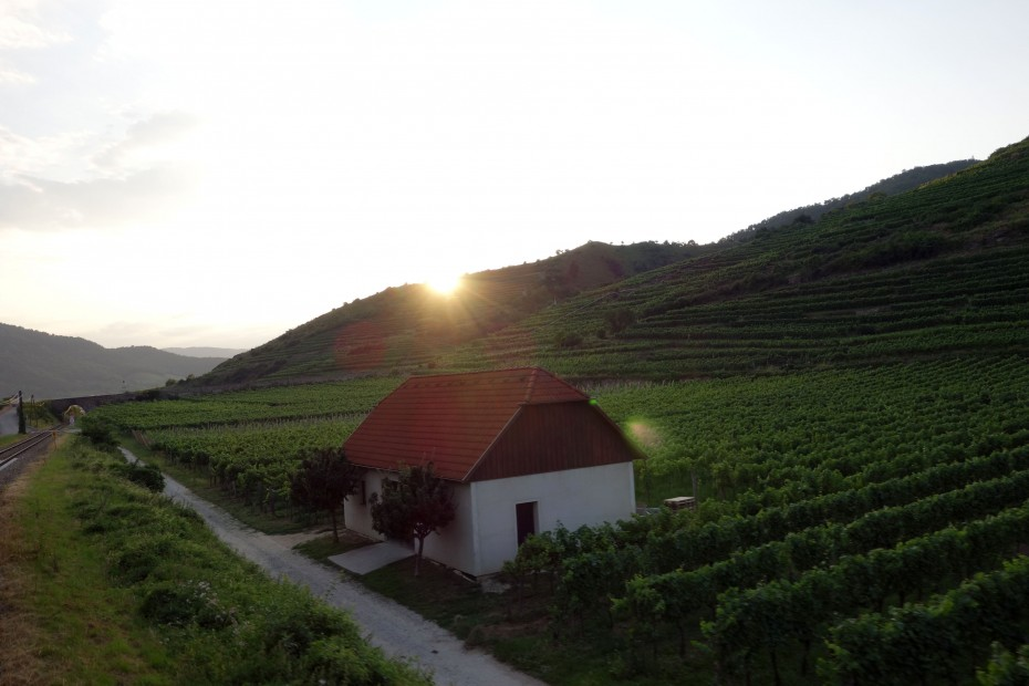 Wachau_Sonnenuntergang