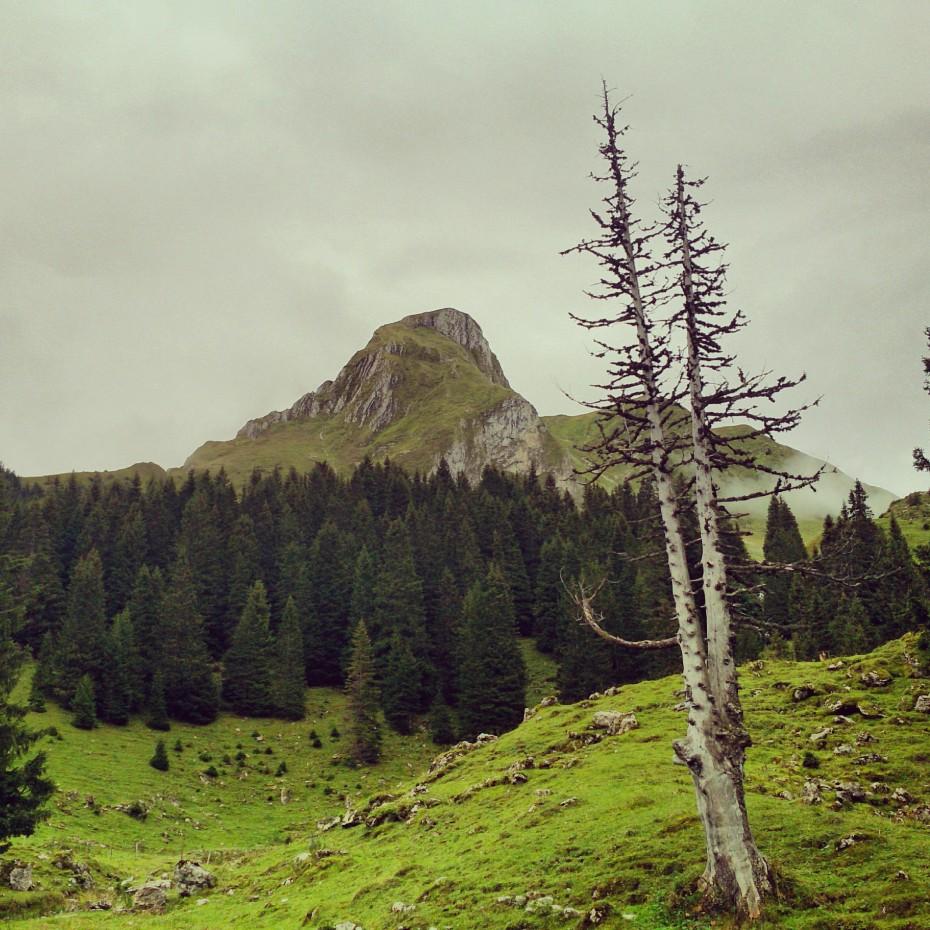 Naturpark_Gantrisch_3