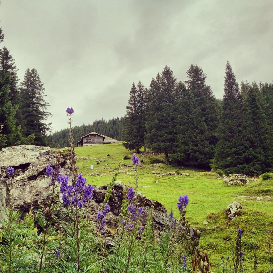 Naturpark_Gantrisch_Gantrischseeli_3