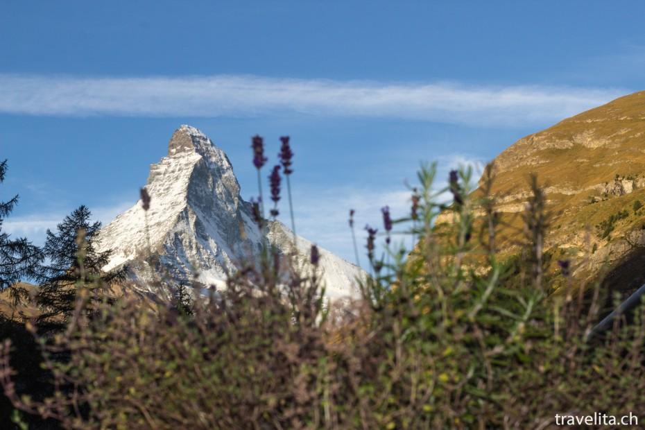 Sicht auf das Matterhorn