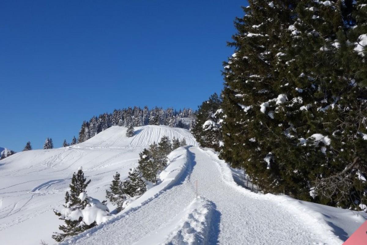 Reisen im Winter – worauf man achten sollte