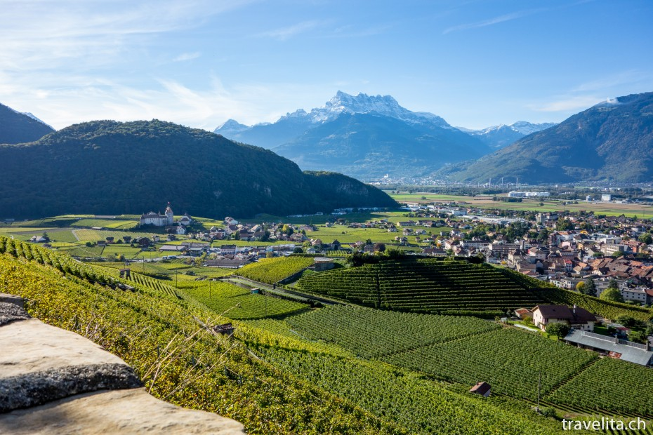 Aigle_Weinlese_5