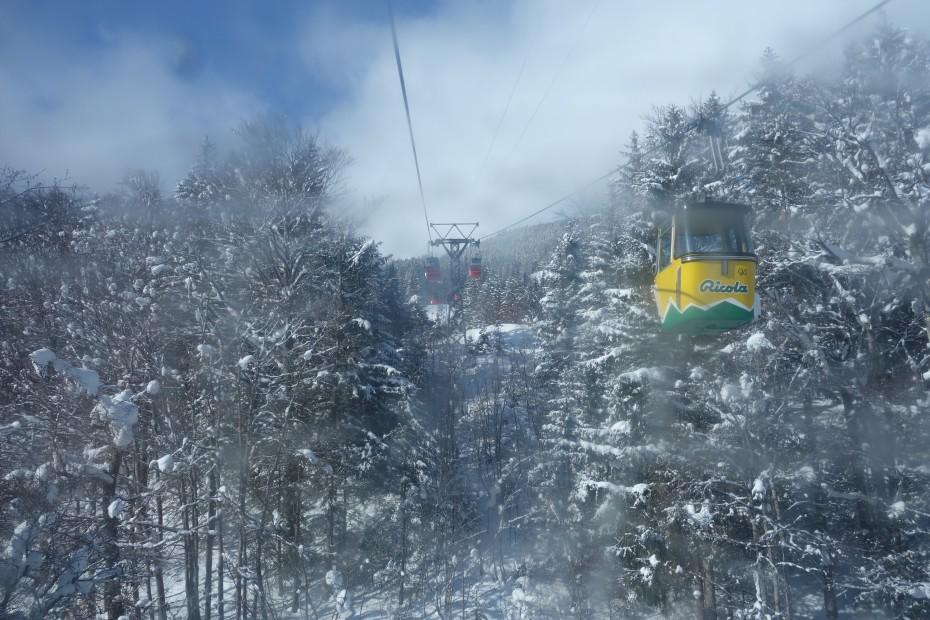 Grindelwald_Jungfrauregion_1
