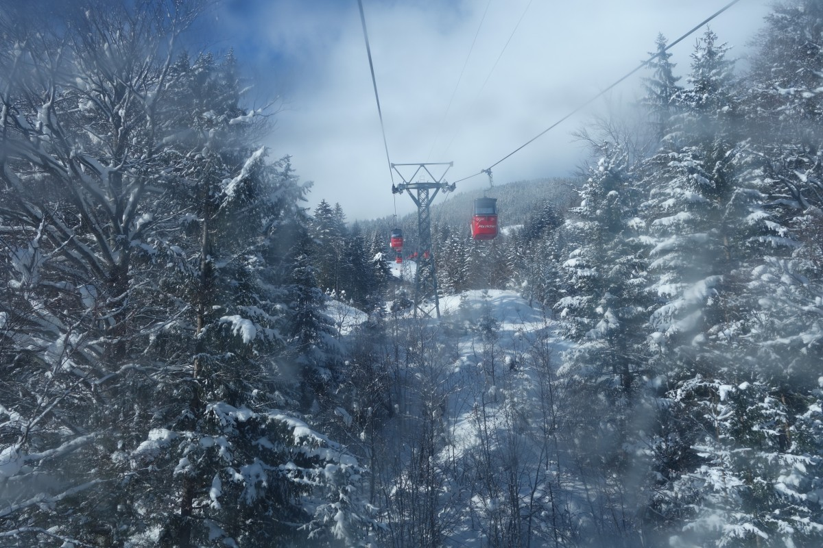 Grindelwald und ich – ein Freundschaftsversuch
