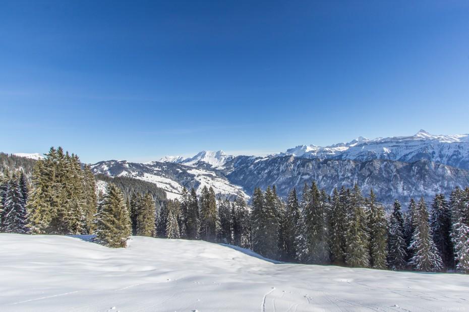 Winter Berner Oberland Thunersee