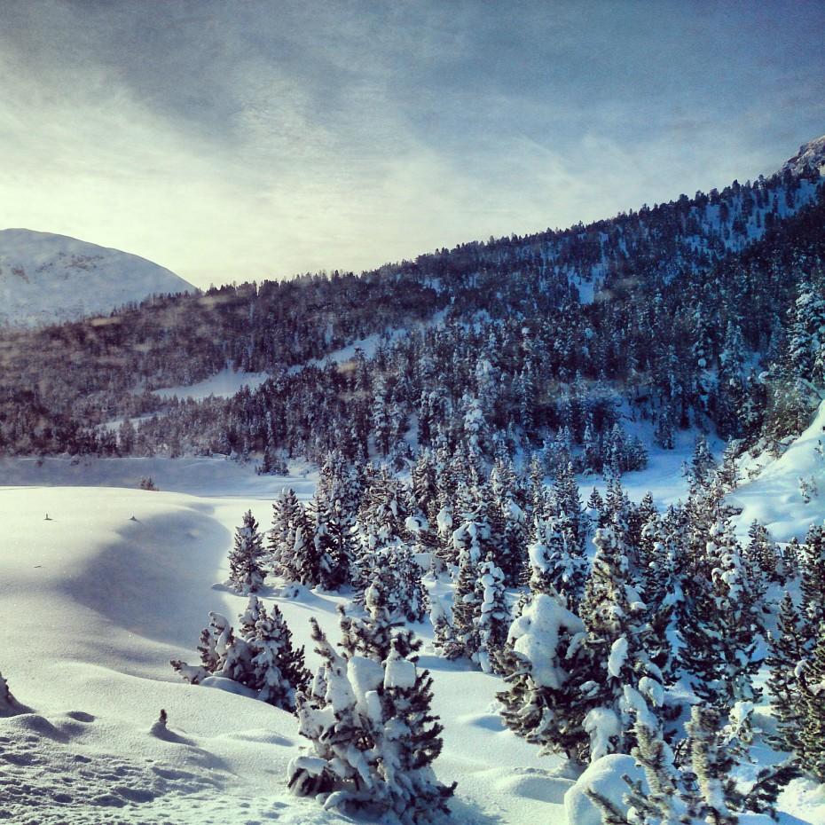 Schweizer_Nationalpark_2
