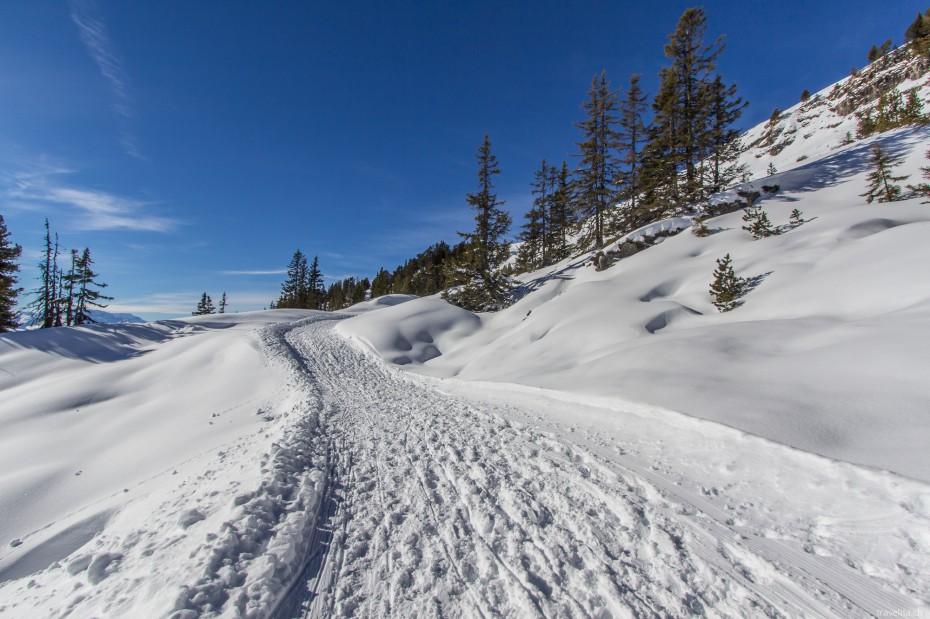 Winterwandern-Niederhorn-2