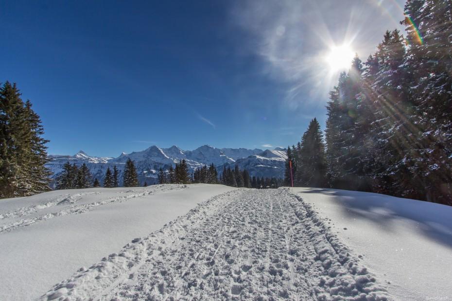 Winterwandern-Niederhorn-4