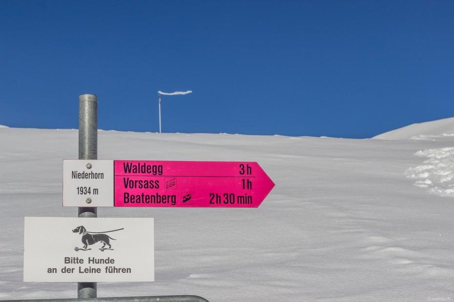Winterwandern-Niederhorn