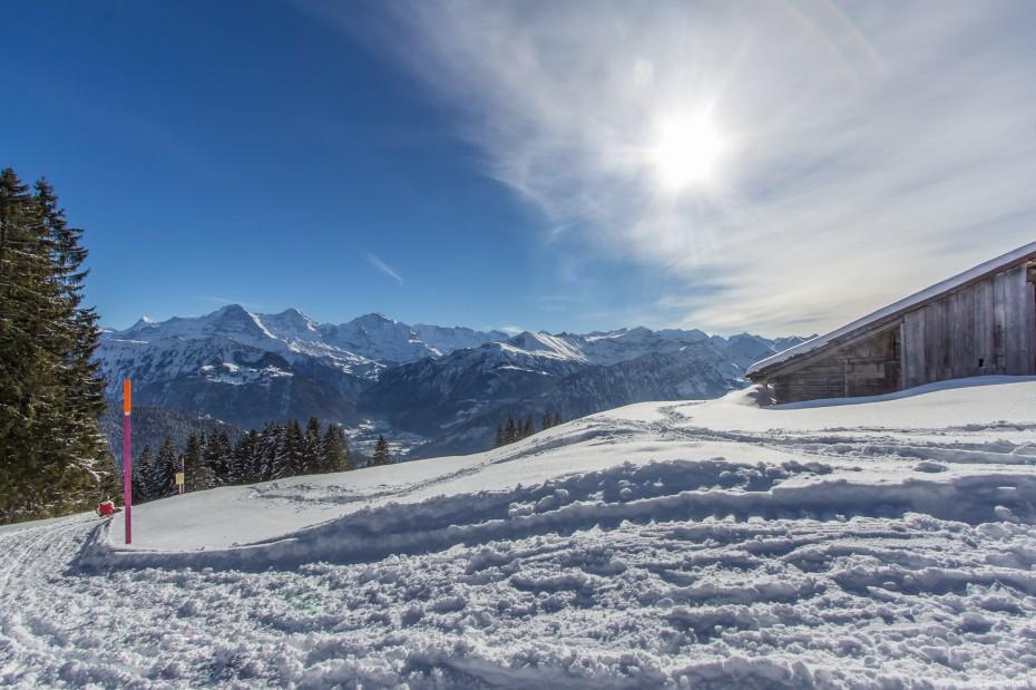 Schlittelweg Waldegg Thunersee