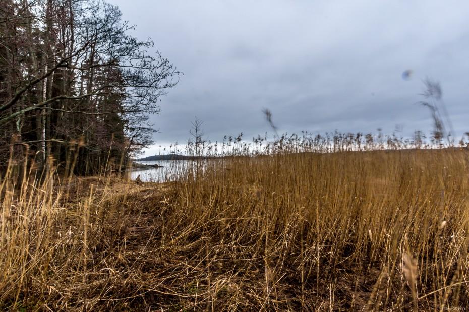 Turku-Ruissalo-14