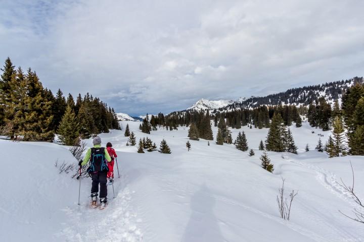 Schneeschuhtour in den Waadtländer Alpen