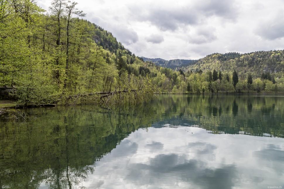 Frühling am Bleder See in Slowenien