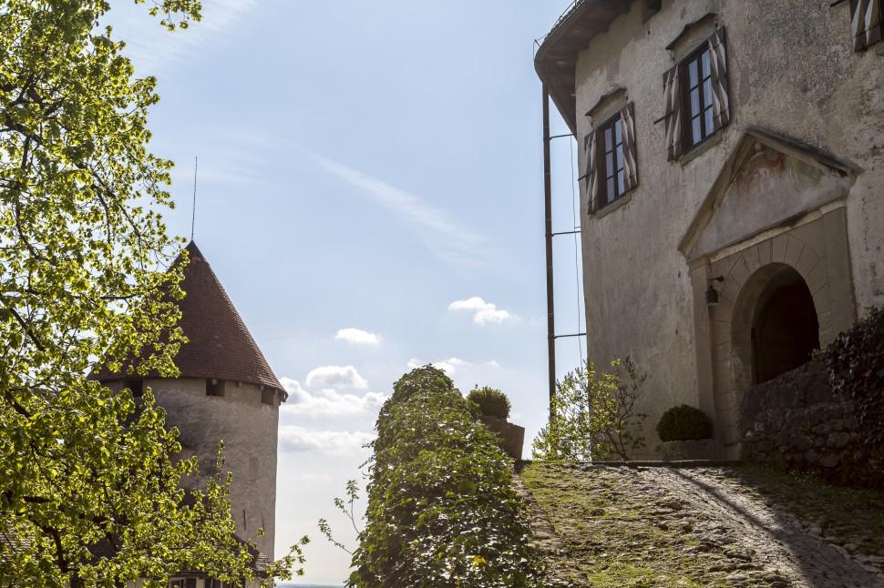 Bled-See-Slowenien-36