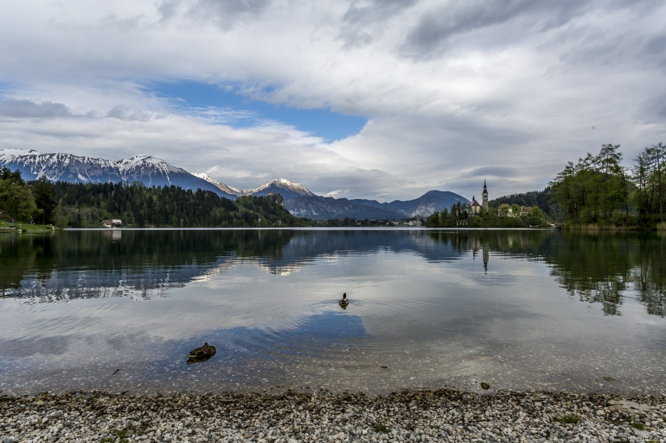 Bled-See-Slowenien-8