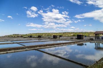 Fische im Salzmantel - Erfolgsgeschichten aus Sečovlje