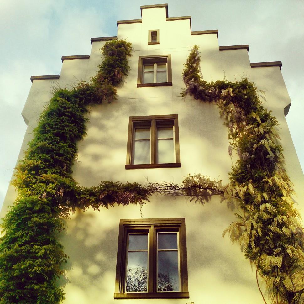 Schloss-Wartegg