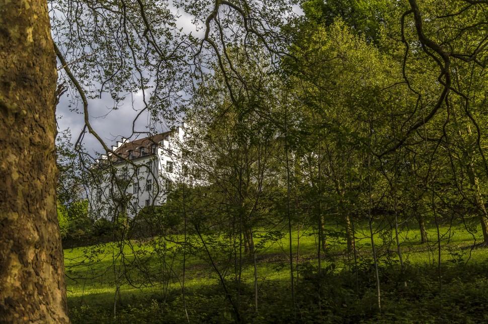 Schloss-Wartegg-Park-2