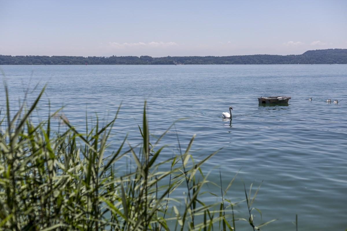 Twannbachschlucht Wanderung und Picknickplausch