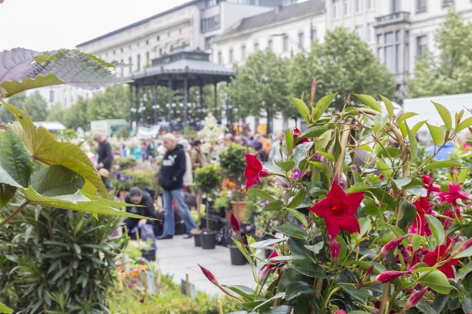 Gent-Blumenmarkt-Kouter-5