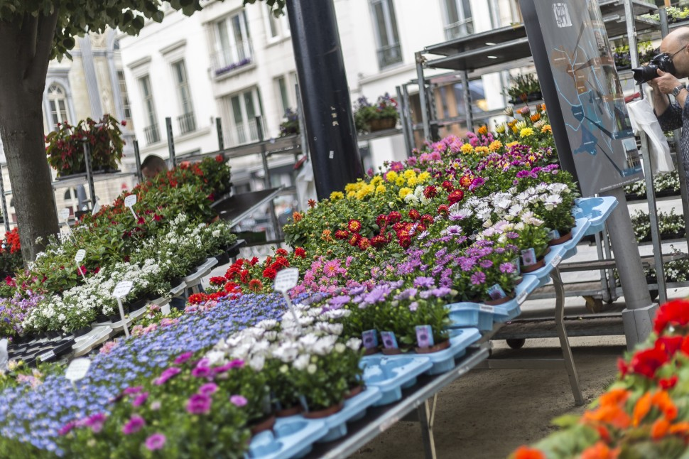 Gent-Blumenmarkt-Kouter-6