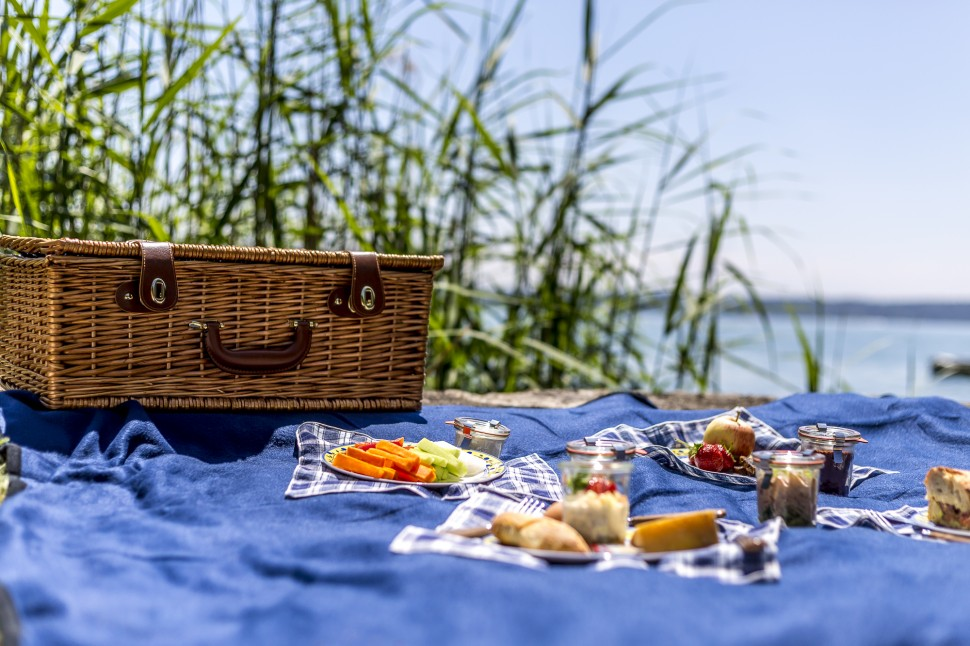 Picknick-am-Bielersee-Fontana-2
