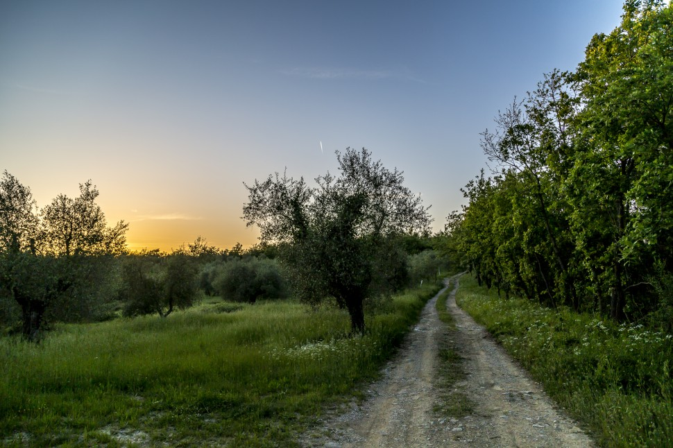 Toskana-Sonnenuntergang
