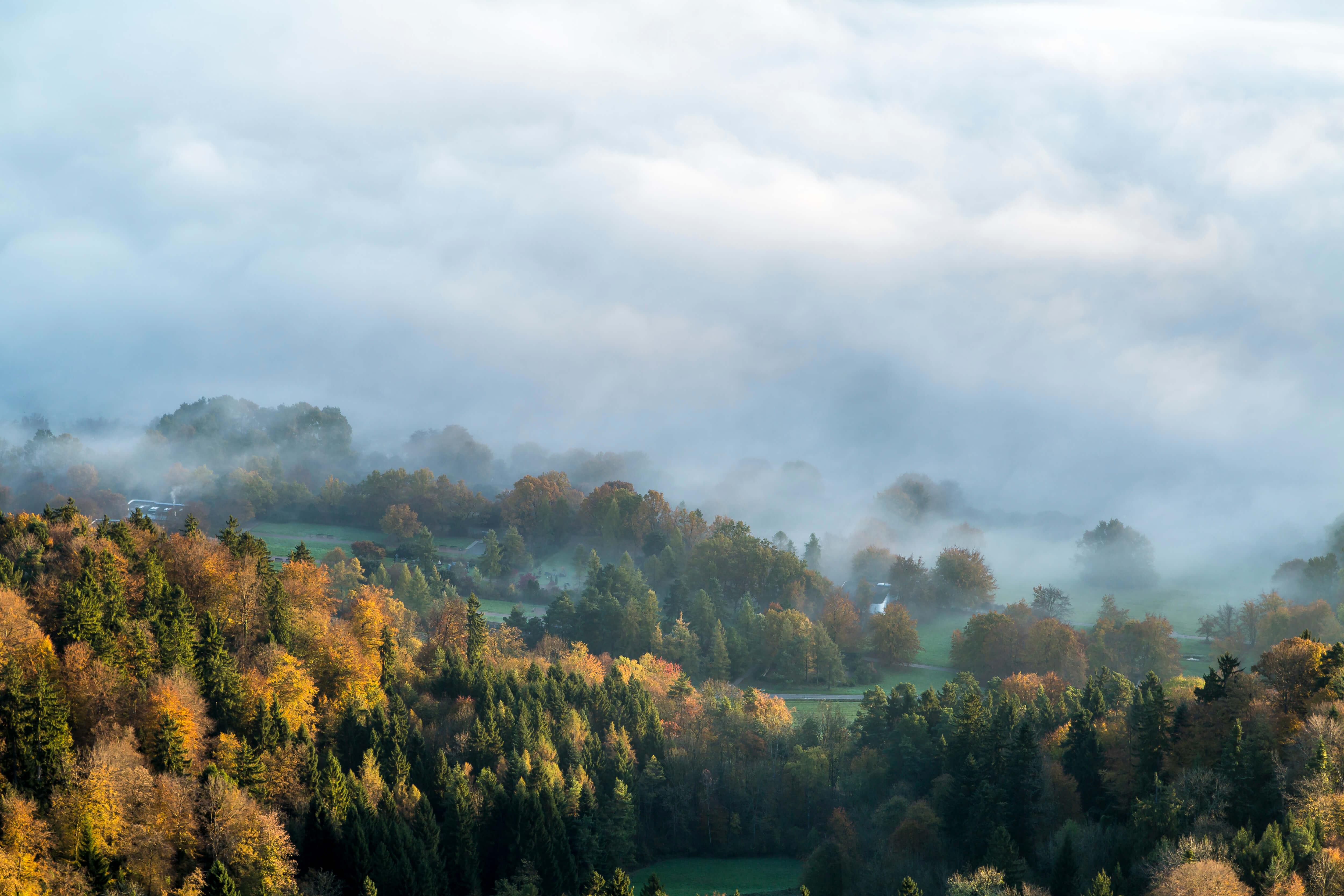 Wandertipp Sihlwald