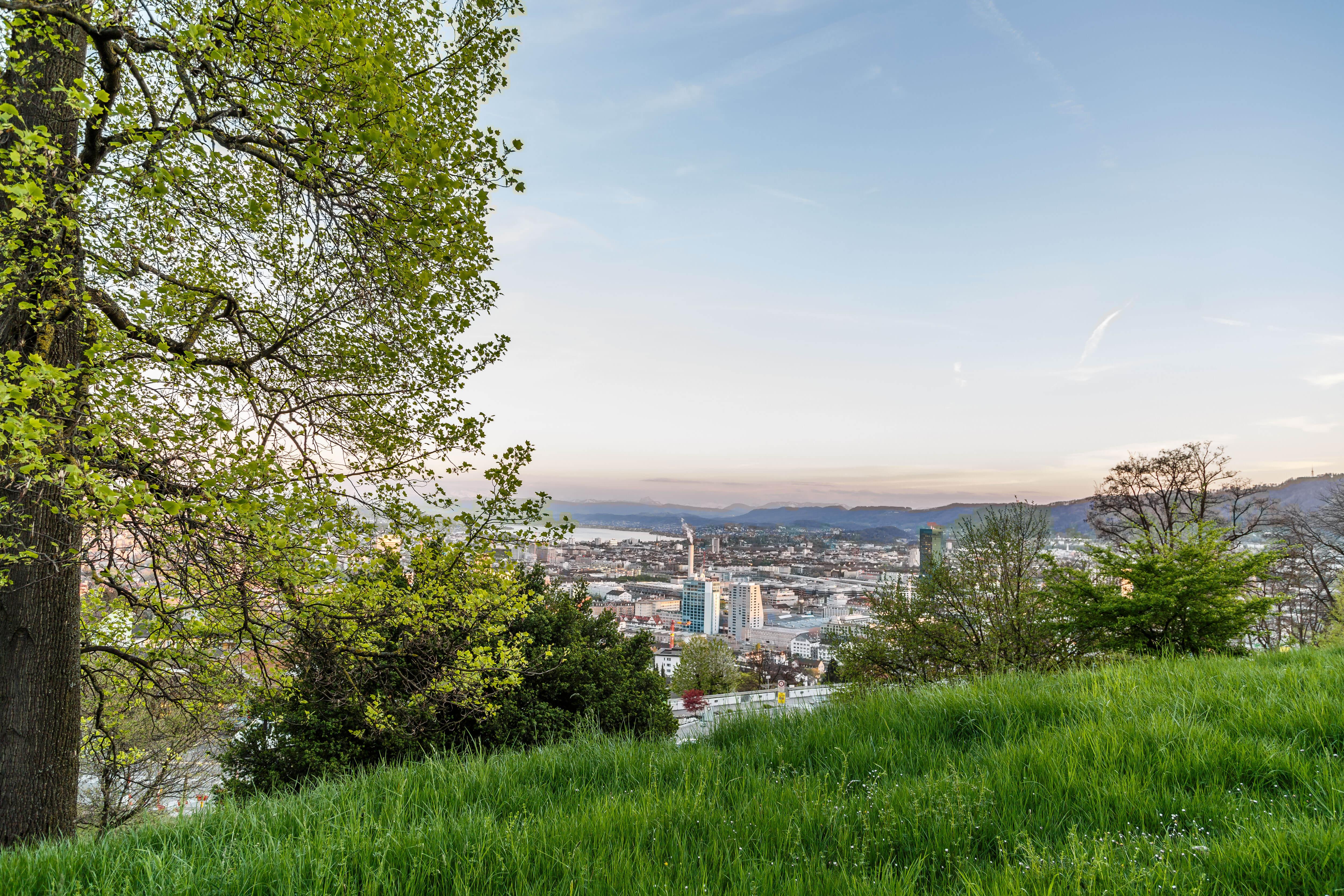 Wandertipp Waid Zürich