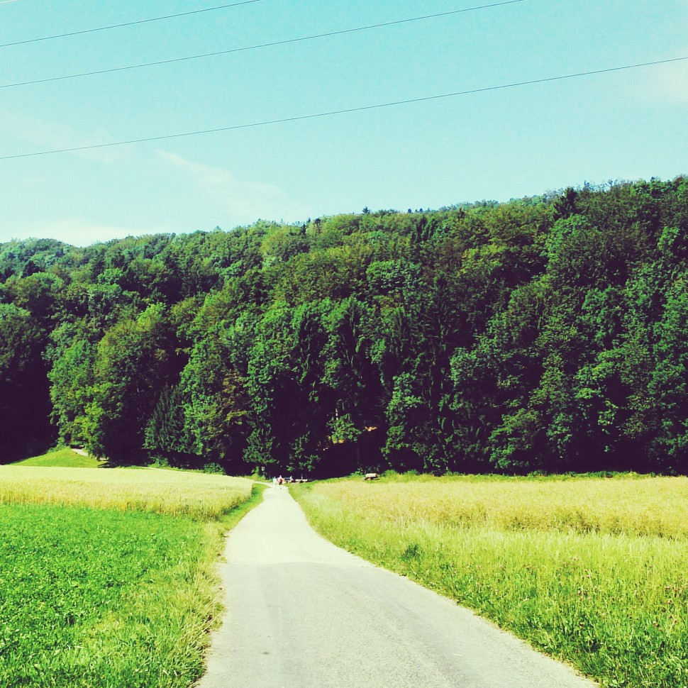 Wanderweg-zum-Egelsee