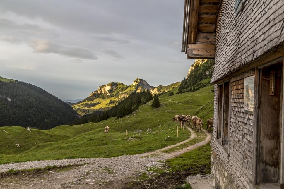 appenzell-Furgglenalp