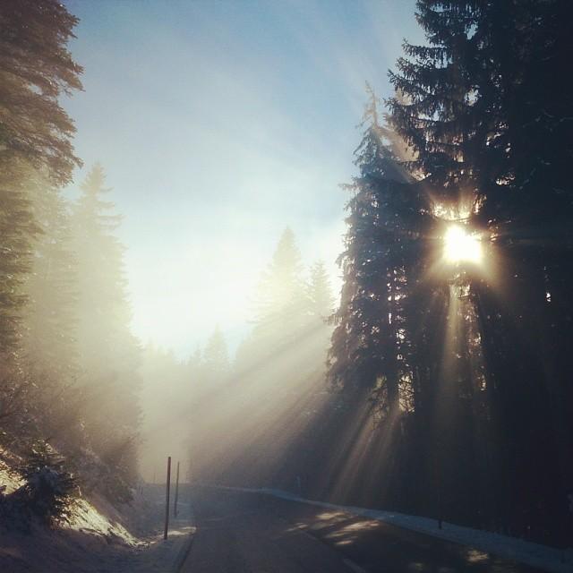 chasinglight