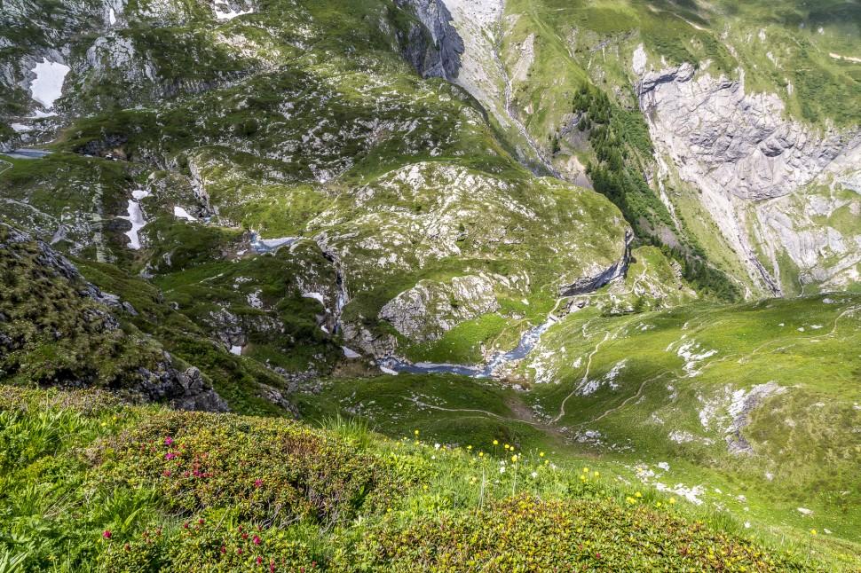gstaad-Berge-Alpenrosen