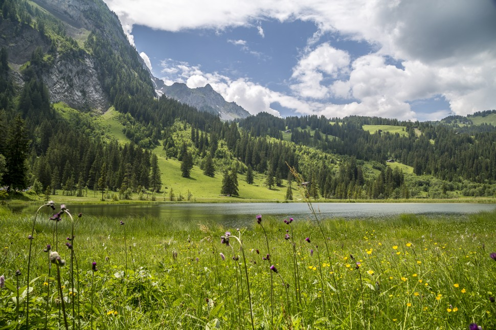 gstaad-Lauenensee-1