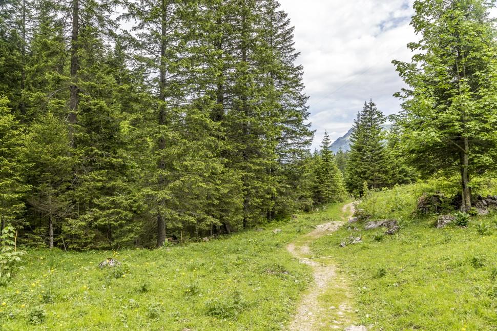 gstaad-Wanderung-1