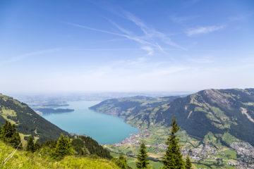 Wanderung auf der Rigi - ein Berg mit Aussicht