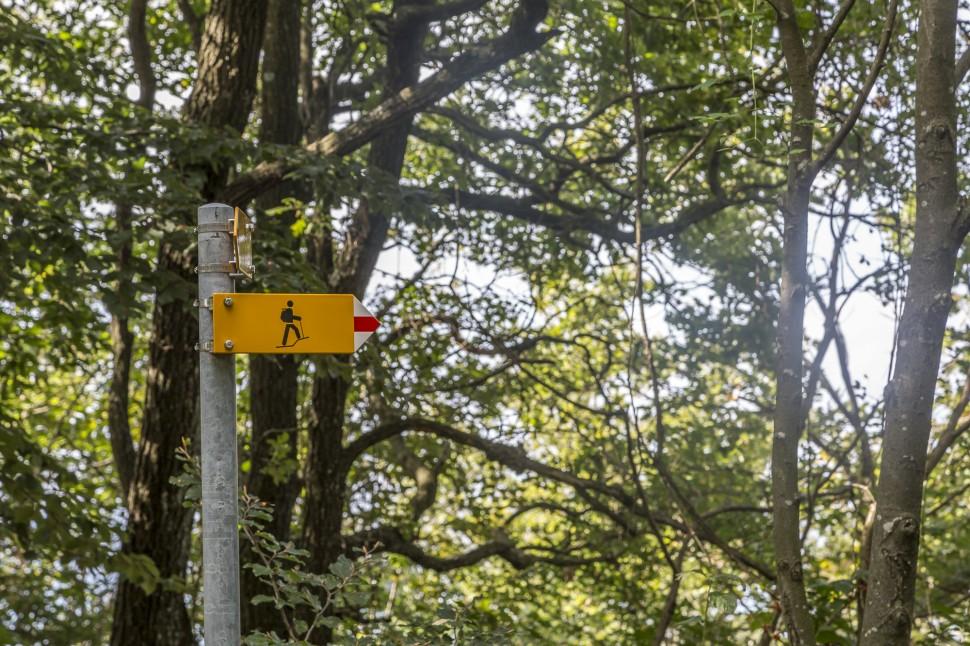 Monte-San-Giorgio-Wandern