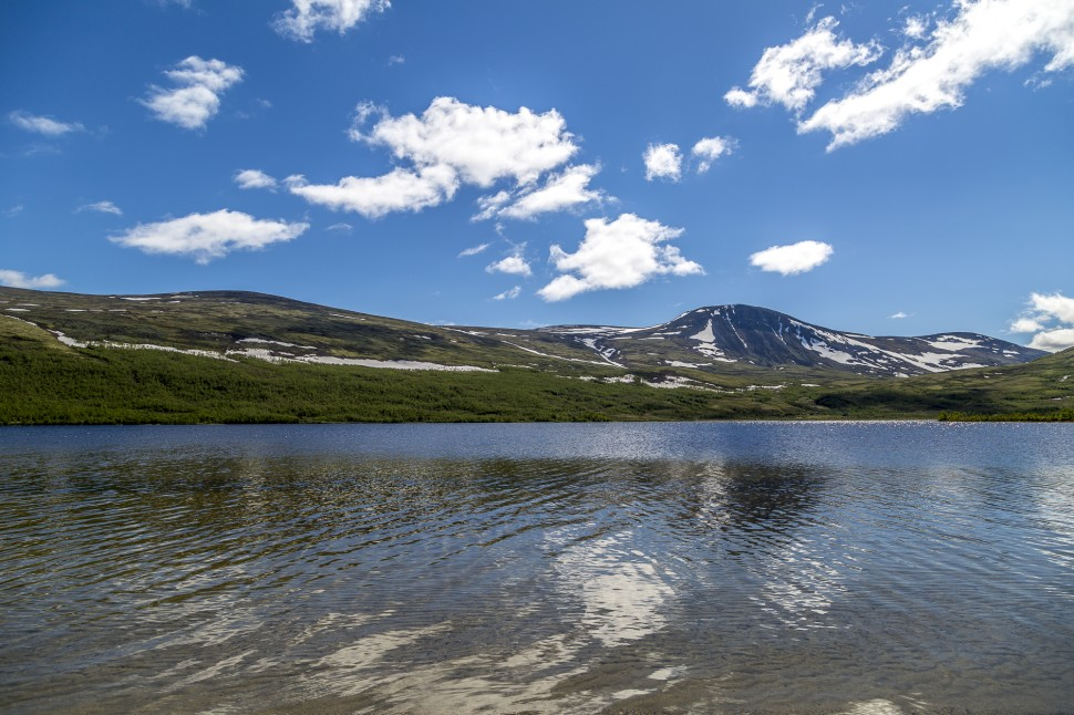 dovrefjell-national park