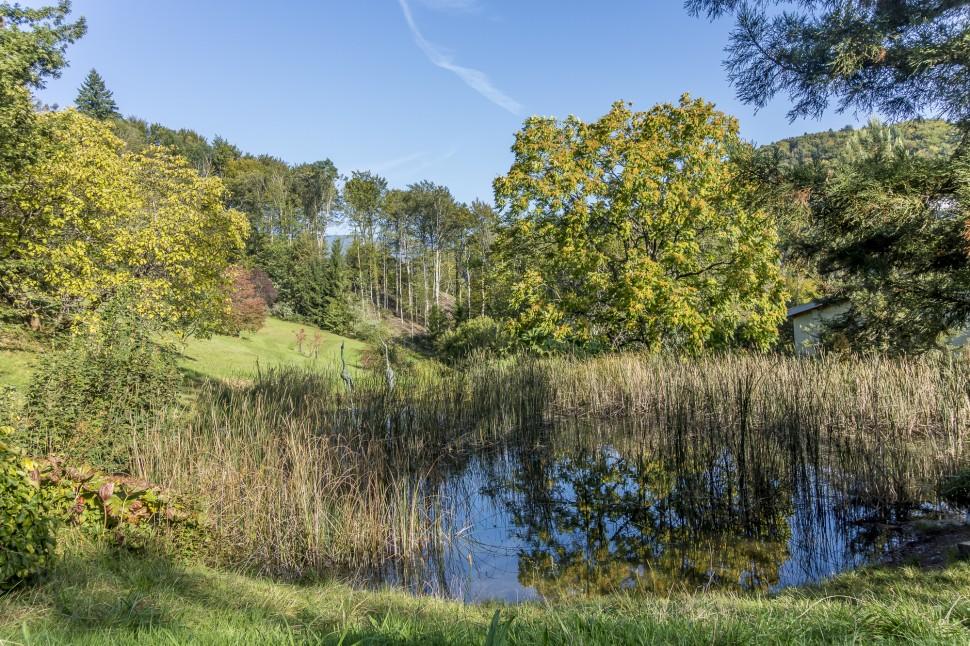 Arboretum-aubonne-1